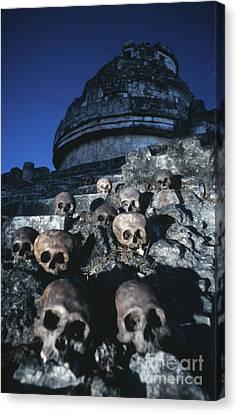 Skulls At Chichen Itza Canvas Print
