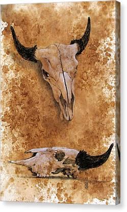 Skulls Canvas Print by Debra Jones
