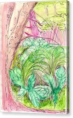 Skunk Cabbage Swamp Canvas Print by Elizabeth Thorstenson