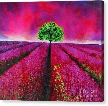 Sky And Field Aflamed Canvas Print