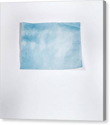 Sky Blue On White Canvas Print by Scott Norris
