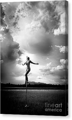 Sky Dancing Canvas Print by Scott Sawyer