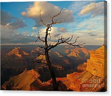 Sky Is Limit Canvas Print