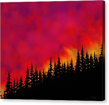 Sky On Fire Canvas Print by Tim Stringer