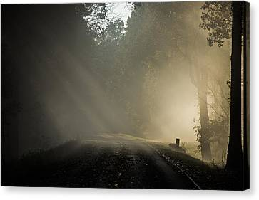 Skyline Drive One Canvas Print by Kevin Blackburn