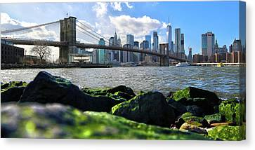Canvas Print featuring the photograph Skyline by Mitch Cat