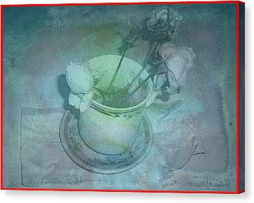 Skyworks 1 Rose Canvas Print by Friedl Aigner