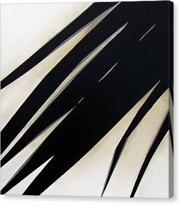 Slash Canvas Print by Slade Roberts