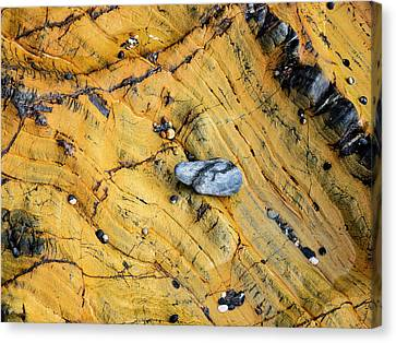 Slate Cobble On Rock Canvas Print