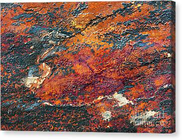 Slate Tones Canvas Print by Tim Gainey