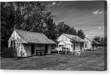 Slave Quarters At Frogmore Plantation  -  Bw Canvas Print by Frank J Benz