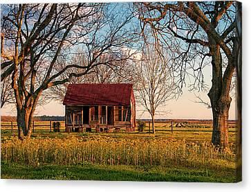 Slave Quarters - Laura Plantation - Vacherie, Louisiana Canvas Print by Mitch Spence