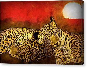 Sleeping Cats Canvas Print