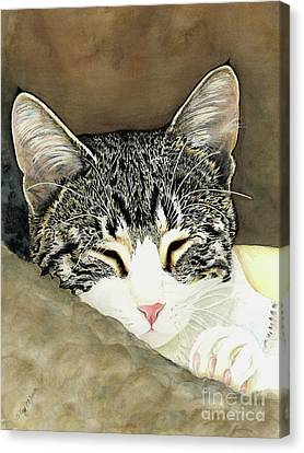 Sleeping Mia Canvas Print