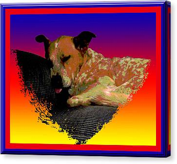 Sleeping Soundly Canvas Print by One Rude Dawg Orcutt