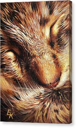 Sleeping Tabby Canvas Print by Elena Kolotusha