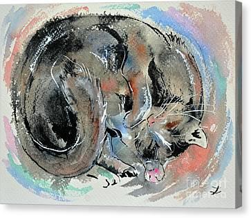 Canvas Print featuring the painting Sleeping Tortoiseshell Cat by Zaira Dzhaubaeva