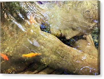 Sleeping Under The Water Canvas Print by Munir Alawi