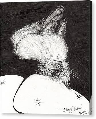 Catnap Canvas Print - Sleepy Belina by Vincent Alexander Booth