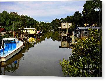 Sleepy Cedar Key Florida Canvas Print by David Lee Thompson