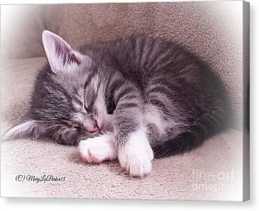 Sleepy Kitten Bymaryleeparker Canvas Print