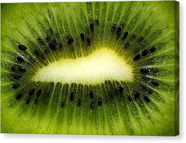 Slice Of Juicy Green Kiwi Fruit Canvas Print by Tracie Kaska