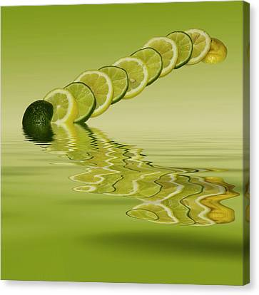 Slices Lemon Lime Citrus Fruit Canvas Print by David French