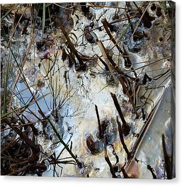 Slicked Canvas Print