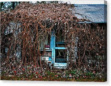 Slightly Overgrown Canvas Print by Christopher Holmes