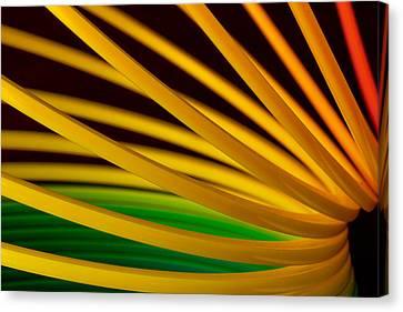 Slinky Iv Canvas Print