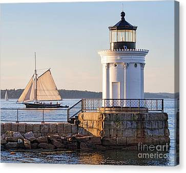 Sloop And Lighthouse, South Portland, Maine  -56170 Canvas Print by John Bald