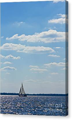 Sloop Sailing On The Harbor Canvas Print by Dustin K Ryan