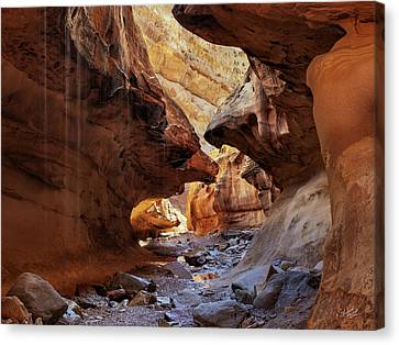 San Rafael Swell Canvas Print - Slot Canyon Forms And Light by Leland D Howard