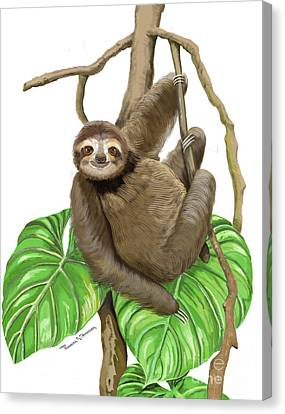 Canvas Print featuring the mixed media Hanging Three Toe Sloth  by Thomas J Herring