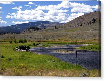 Slough Creek Angler Canvas Print