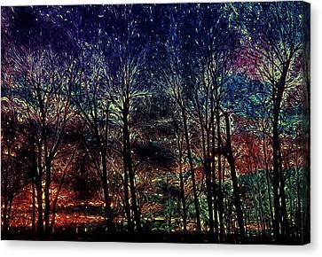 Bare Trees Canvas Print - Slumbering Sun by Elaine Hutchings