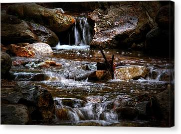 Small Falls Canvas Print by Elaine Malott