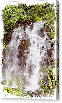Small Falls On Mt. Ranier Canvas Print by Peter J Sucy