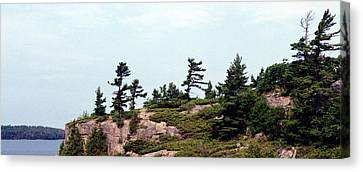 Canvas Print featuring the photograph Small Island by Lyle Crump