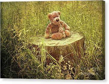 Small Little Bears On Old Wooden Stump  Canvas Print by Sandra Cunningham