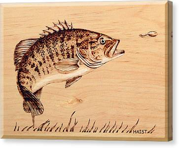 Canvas Print featuring the pyrography Small Mouth Bass by Ron Haist