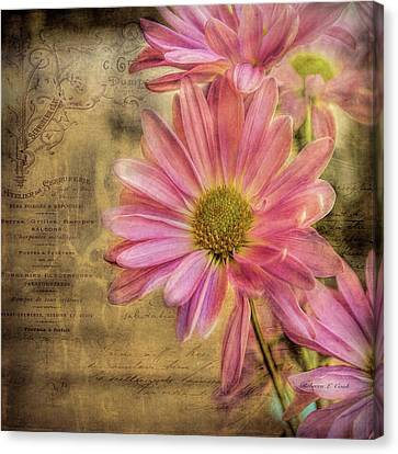 Canvas Print featuring the photograph Small Perfections by Bellesouth Studio