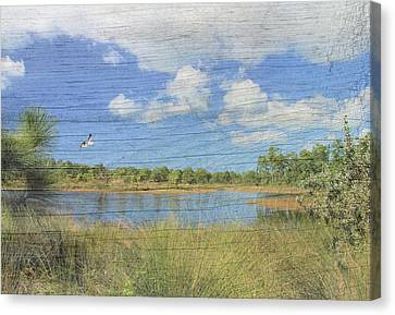 Small Pond With Weathered Wood Canvas Print by Rosalie Scanlon