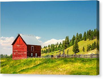 Small Red Shed Canvas Print by Todd Klassy