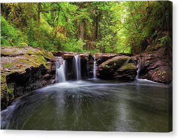 Small Waterfall At Rock Creek Canvas Print by David Gn