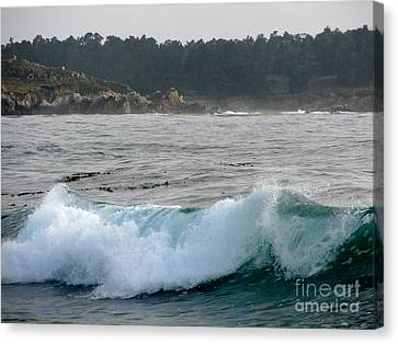 Whalers Cove Canvas Print - Small Wave On Carmel Bay by James B Toy