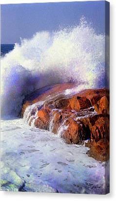 Smashing Breaker Canvas Print by Frank Wilson