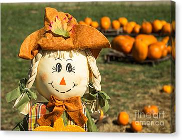 Smiling Scarecrow With Pumpkins Canvas Print