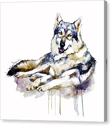 Smiling Wolf Canvas Print by Marian Voicu