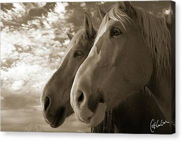 Smith And Wesson Canvas Print by Christine Hauber